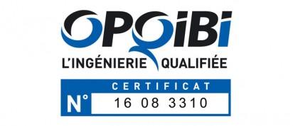 logo-opqibi-2007-ICES